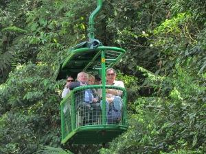 Irlanda visita Presidente -Rain Forest 30 octubre 2013 066